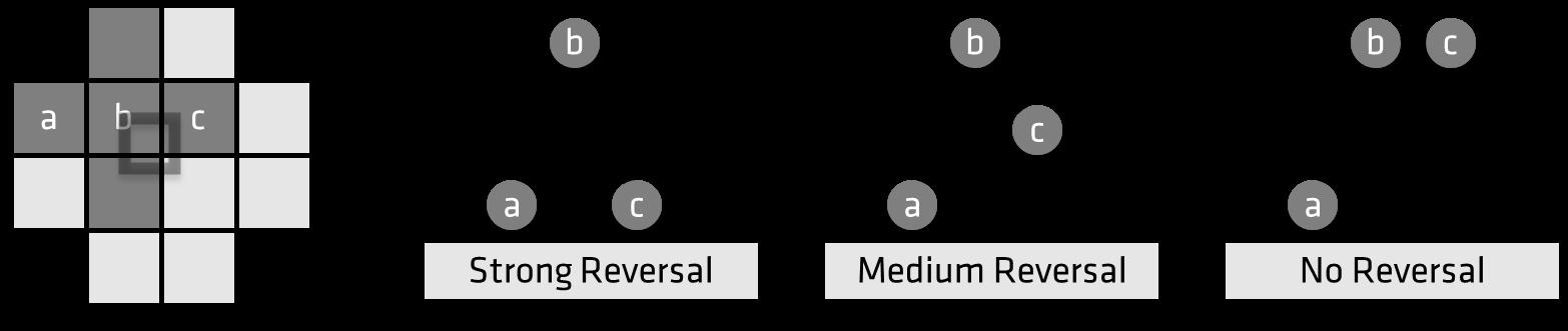 fsr-diagram-light-nobold.png